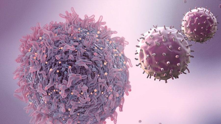 USA erlauben erste Gentherapie gegen Krebs